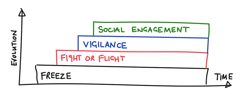 The layers of evolved responses to threat