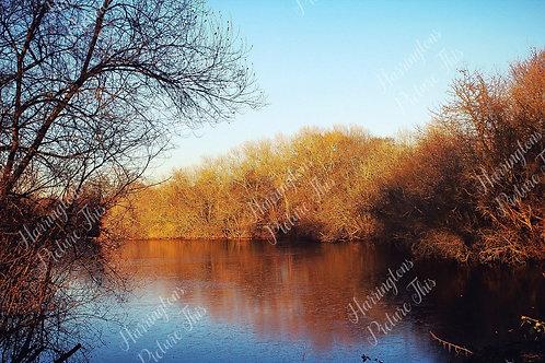 Landscapes (15)