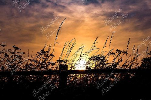 Sunrise and Sunset (1)
