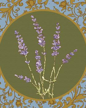 Lavender_edited_edited.png