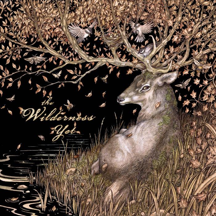 The Wilderness Yet