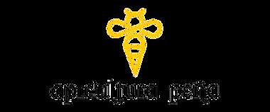diseño logotipo pura vida