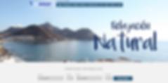 diseño web vistamar