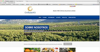 diseño web cañamás