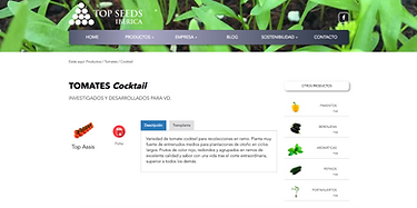 diseño web topseeds iberica
