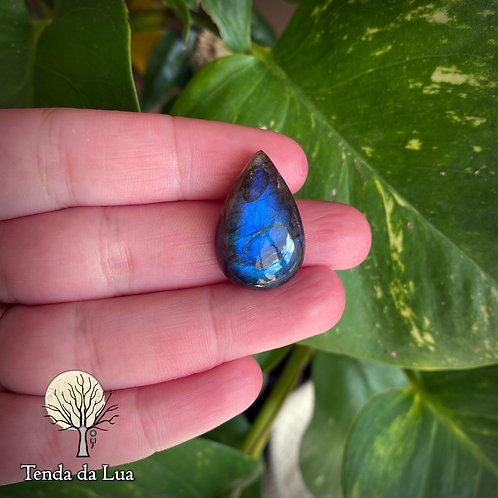 LB119 - Labradorita Azul Gota - 2,6cm x 1,7cm