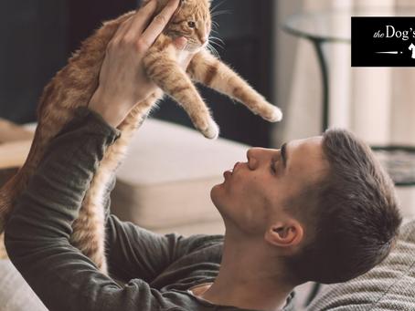 養貓貓的5大好處科學證明貓奴很幸運!