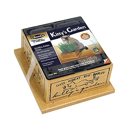 SmartCat  Kitty's Garden Edible Grass Planter