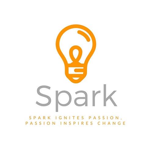 Spark Incorporated Internship