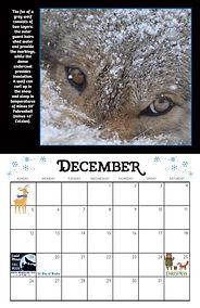 2021 Calendar (Dec 1).jpg