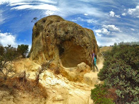 Mt. Diablo Rock