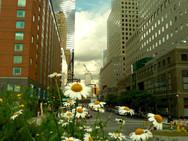 Ground Zero Hope, NYC