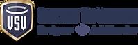 VSV2_Logo_WIX.png