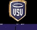 VSV2_Logo_name.png