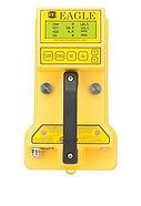 Eagle Gas Detector.jpg