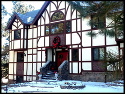 The Forest Manor