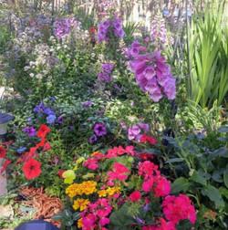 Terraced Flowerbeds