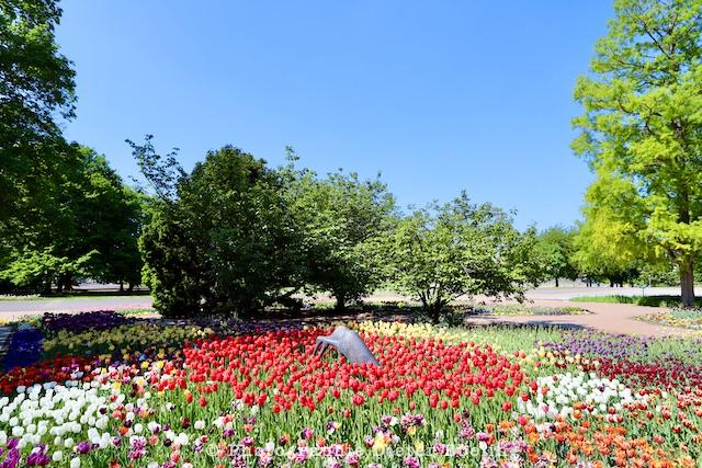 2020_04_26_Köln_Rheinpark_IMG_11