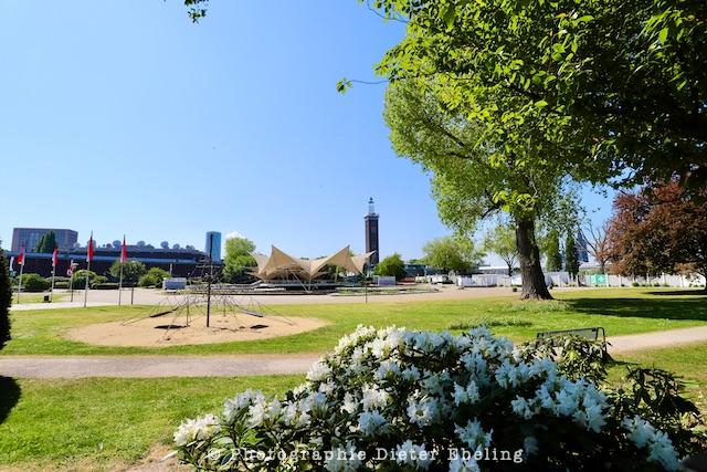 2020_04_26_Köln_Rheinpark_IMG_7