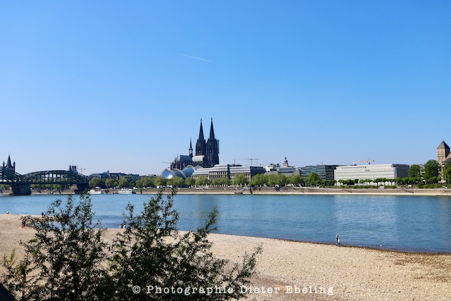 2020_04_26_Köln_Rheinpark_IMG_5