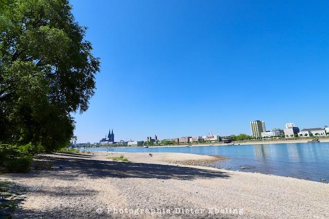 2020_04_26_Köln_Rheinpark_IMG_2