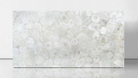 agate jellyfish 1.jpg