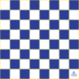 Checkers-24x24-300ppi PNG.png