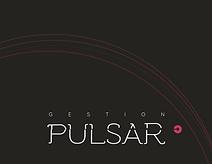 Gestion-Pulsar-Plan-OBNL-17-Septembre.pn