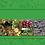 Thumbnail: Meža grāmata