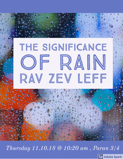 rain rav leff