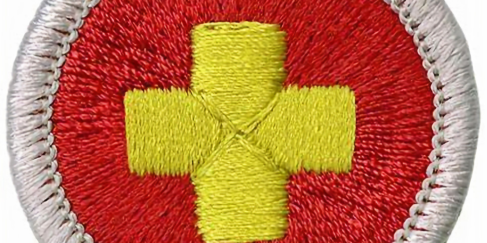 First Aid Merit Badge (taught by veteran scouter Jeanette Lloyd)
