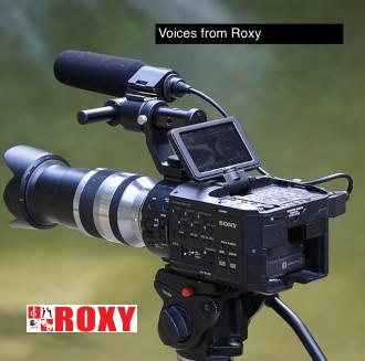 Roxy Voices Series
