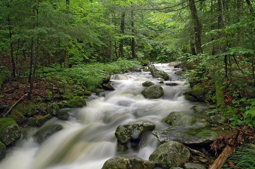 Rushing water at Dunn Falls, Andover, Ma