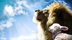 lion-3959780_1280_edited.jpg