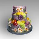 Pomegranite cake.jpg