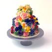 2 Tier cake buttercream Hastings.jpg