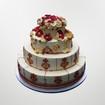 Manjus wedding cake.jpg