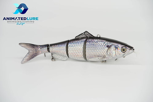 Gizzard Shad Specialty SW