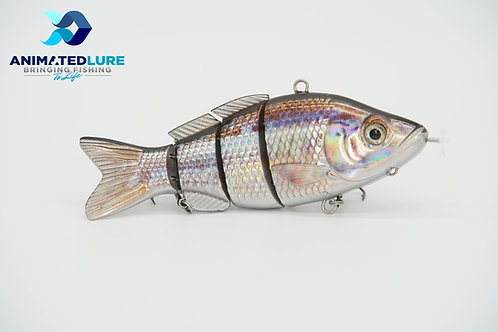 Sand Shiner Specialty