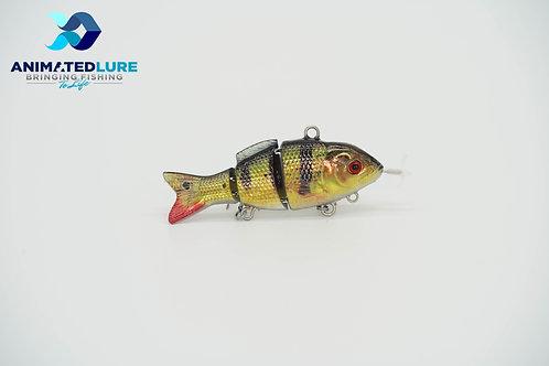 Peacock Bass/Yellow Perch Specialty Mini