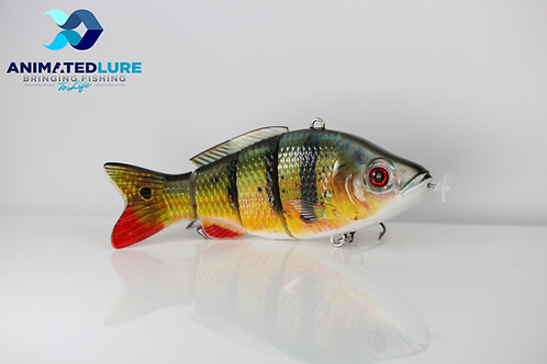 Peacock Bass/Yellow Perch