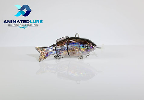 Sand Shiner Specialty Mini