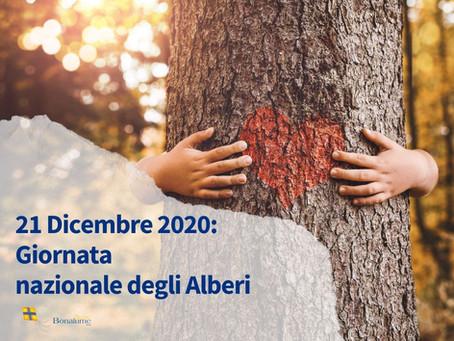 Giornata nazionale degli Alberi – 21 Novembre 2020