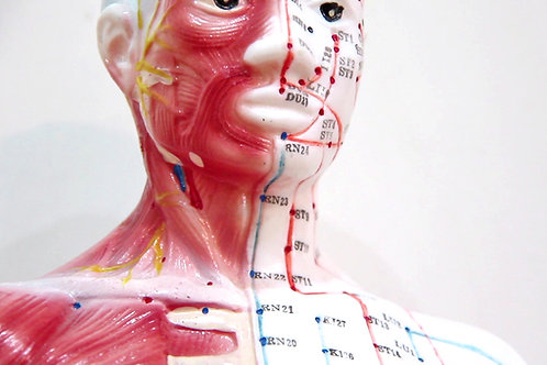 Cursus Acupuncteur Praticien Médecine Acupuncturale et Traditionnelle Chinoise