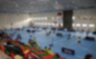 Pabellón Haría - Badminton.jpg