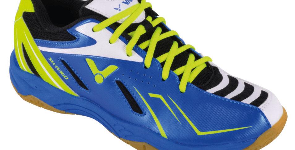SHA360 blue-green
