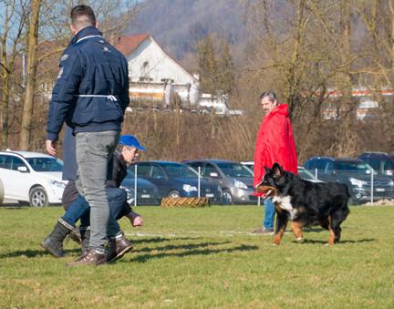 2018-03-24_08.59_Körung_KBS_Aarburg_143.