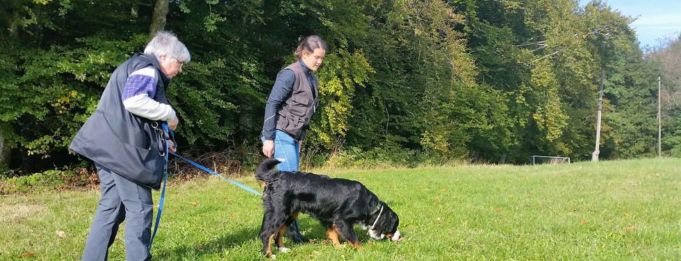 2015-09-25 09.57.19 KBS Schwarzwald.jpg