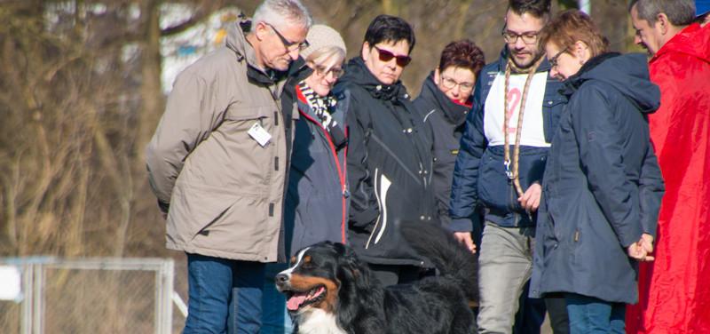 2018-03-24_09.02_Körung_KBS_Aarburg_152.