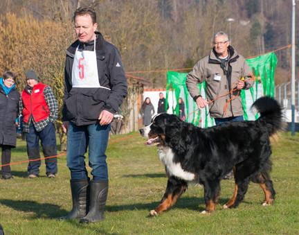 2018-03-24_08.46_Körung_KBS_Aarburg_139.